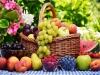 """""""뚱보""""되는 과일과 """"날씬""""해지는 과일"""